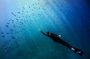 freediving 12