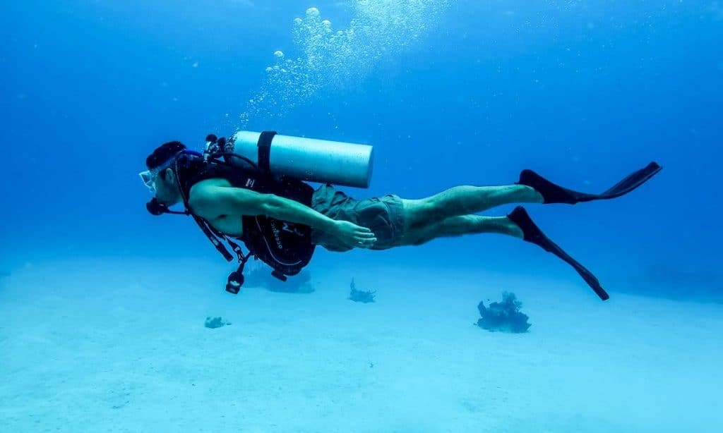 diver image from Wikipedia