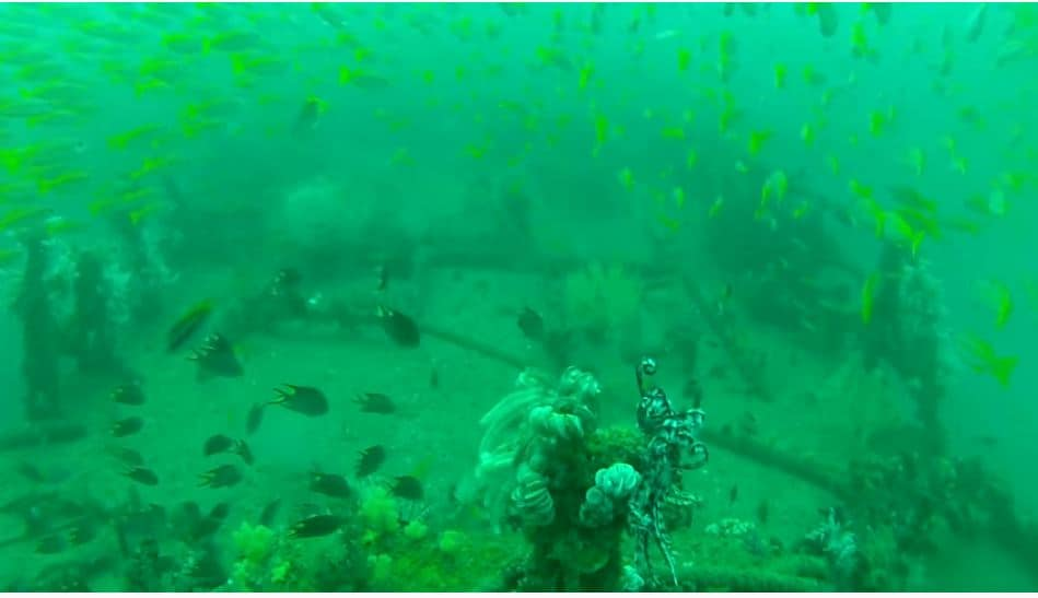 inchcape wreck diving from youtube