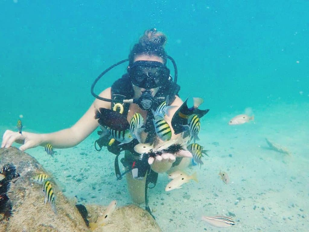 Beginner PADI Basic Scuba Diving