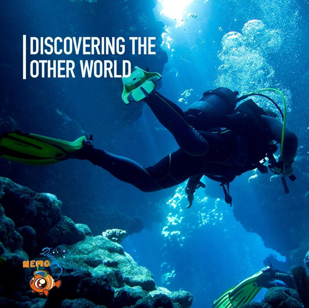 discover the underwater world
